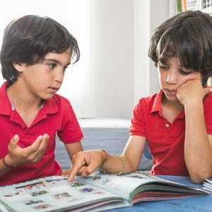 Brothers looking at book together