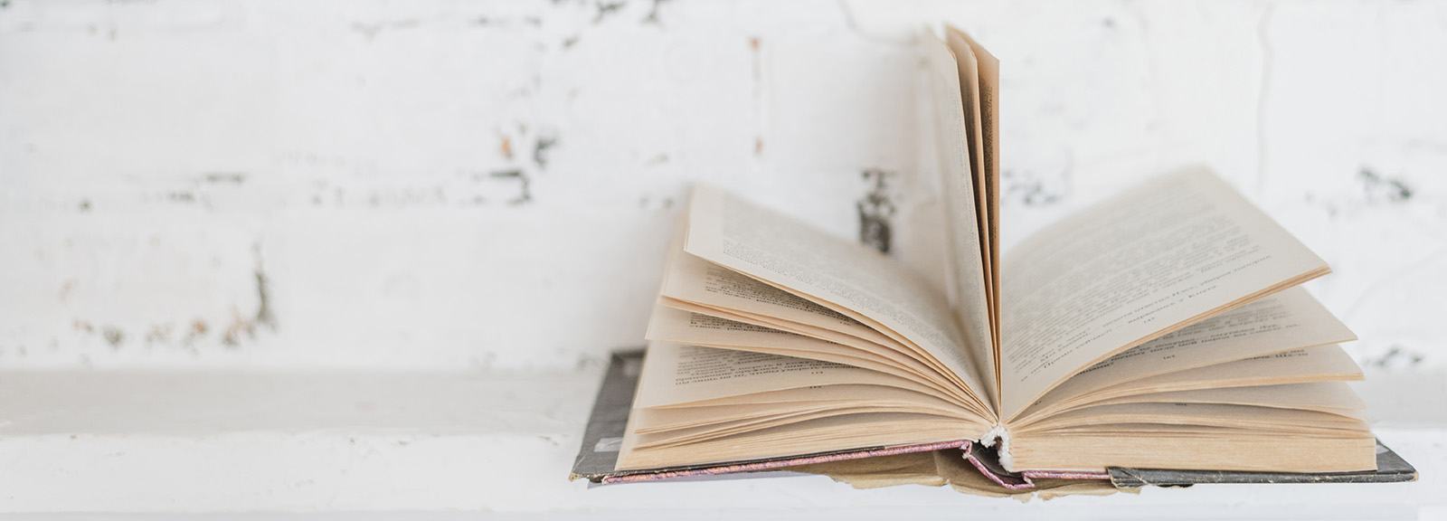 Open book in front of a rustic white wall