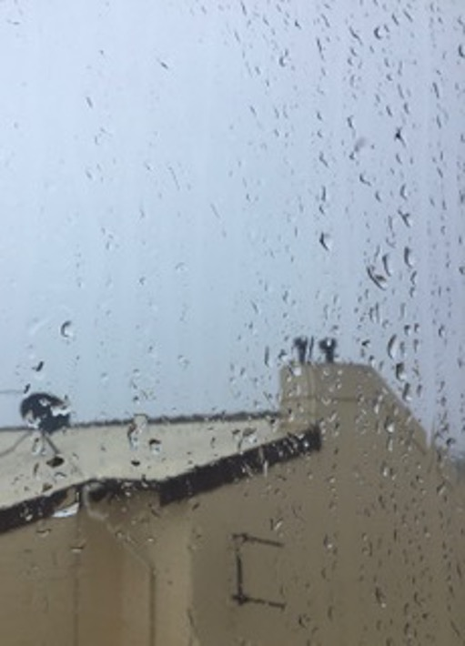 Rainy Window - Annette Gray